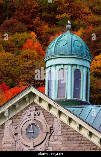 Seagull sits on top of copper covered cupola Royal Victoria Hospital Montreal Quebec Canada - Stock Image