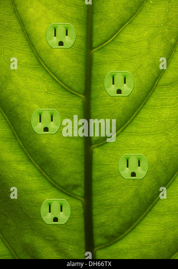 Close-up of a green plant leaf with five green colored electrical outlets added. - Stock Image