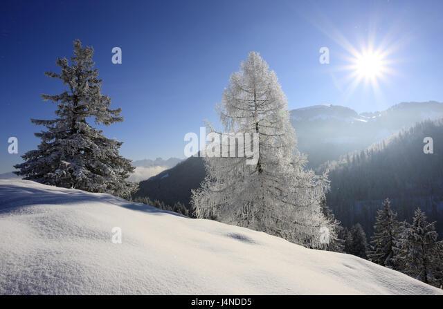 Germany, Bavaria, coil stone region, Mangfallfgebirge, Tatzelwurm, Sudelfeldregion, winter scenery, - Stock Image
