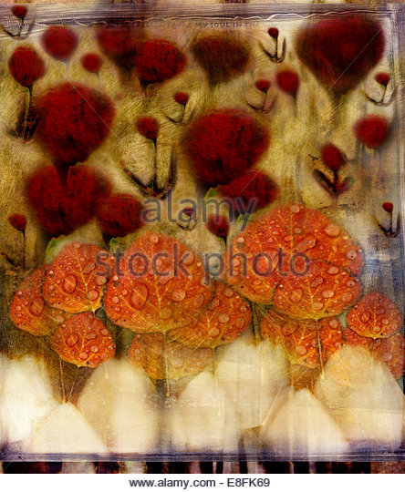 Abstract garden - Stock Image