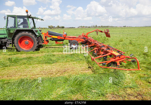 red hay turner behind tractor in green meadow in the netherlands - Stock-Bilder