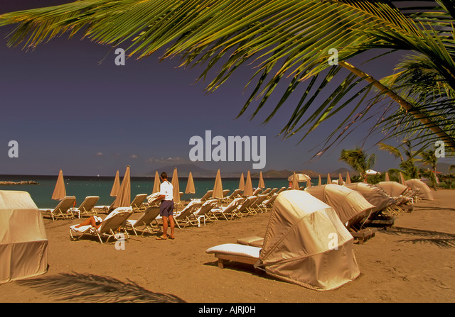 Pinney's Beach, Nevis, idyllic tropical setting, coconut palm trees, placid calm water, sea, ocean, - Stock Image