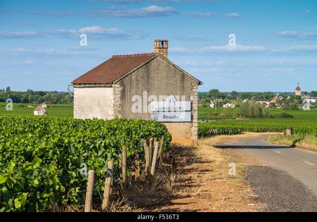 street sign pommard,cote de beaune, burgundy, france, EU, Europe - Stock Image