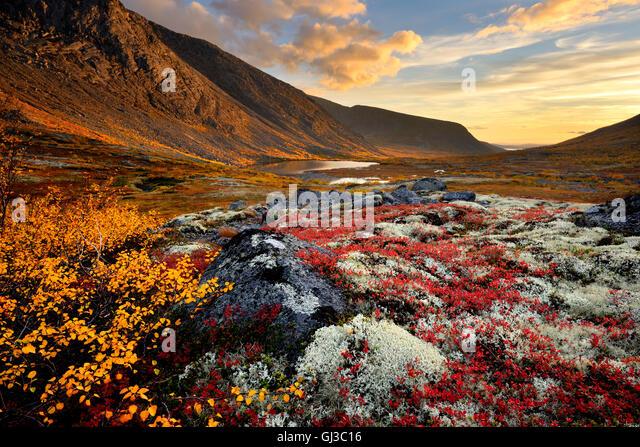 Autumn coloured valley and Malaya Belaya river, Khibiny mountains, Kola Peninsula, Russia - Stock Image
