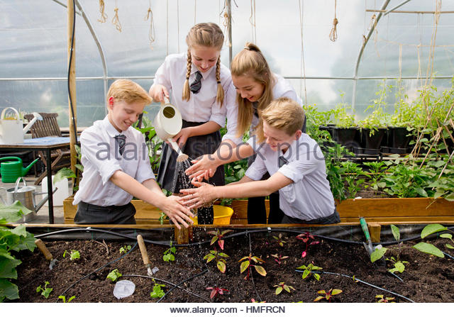 Middle school students in greenhouse gardening rinsing dirty hands with watering can - Stock-Bilder
