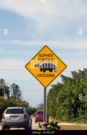 Florida Sanibel Island gopher tortoise sign on highway - Stock Image