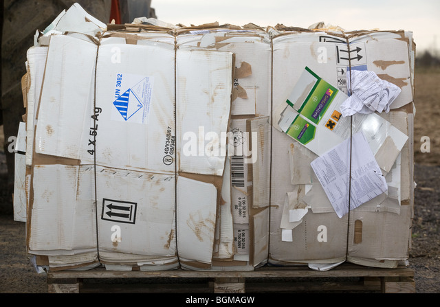 Compressed waste cardboard ready for recycling - Stock Image