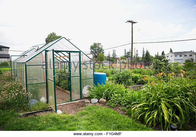 Greenhouse in community garden - Stock Image