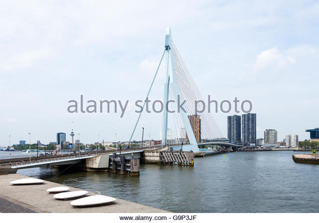 Erasmus bridge, Rotterdam - Stock Image