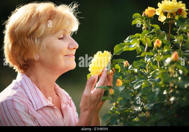 Expression. Senior Woman Model with Garden Roses. Springtime - Stock Image