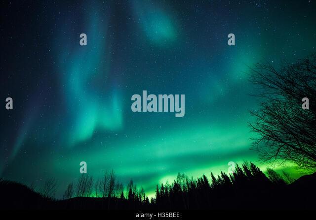 Alaska, USA. 5th Oct, 2016. The Aurora Borealis or Northern Lights illuminate the night sky over Chena River State - Stock Image