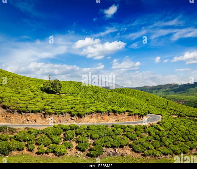 Thiruvananthapuram Travel: Kerala Road Stock Photos & Kerala Road Stock Images