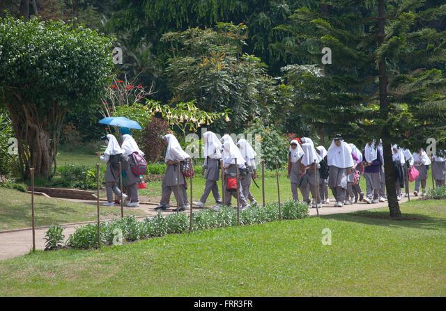 nuwara eliya muslim A train ride from colombo to nanuoya for nuwara eliya in sri lanka's hill country.