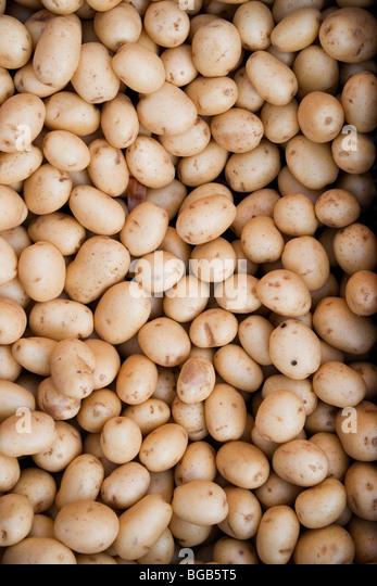 New potatoes at the market - Stock Image