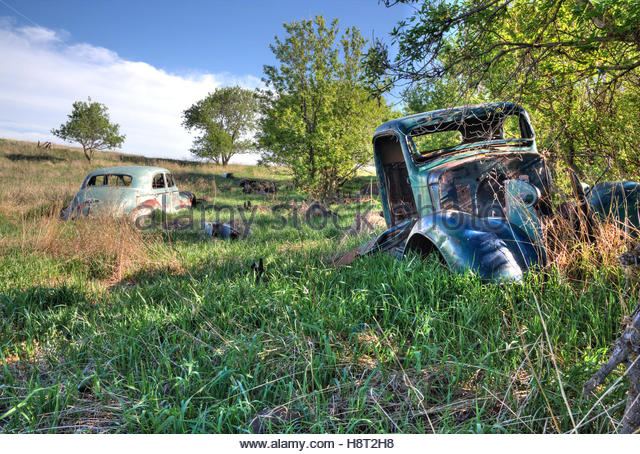 Far from the nearest town, vintage cars slowly surrender to the elements in southern Saskatchewan. - Stock Image