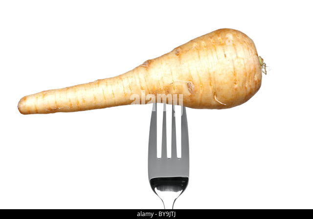 Photo of a parsnip on a fork isolated on a white background, part of a series. - Stock Image