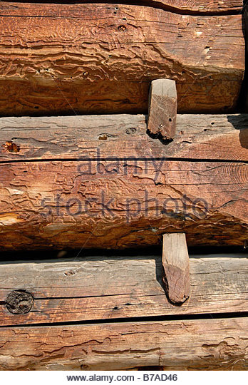 Detail of the woodwork from sheep fold hailing from Puru Pak Alba County - Stock Image