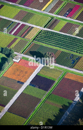 The Netherlands, Veenendaal, Flowers and plant nursery. Aerial. - Stock Image