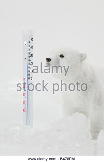 A toy polar bear ice and a thermometer - Stock-Bilder