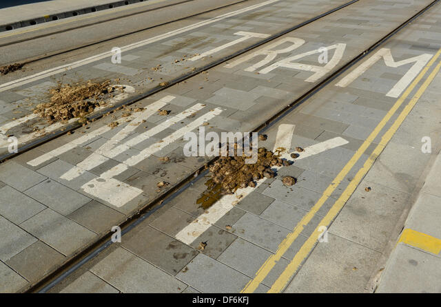 Manchester, UK. 29th Sept 2013. Police horse faeces on a road following a North West TUC organised march and rally - Stock Image