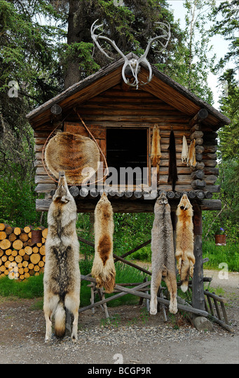 Athabascan village stock photos athabascan village stock for Alaskan cuisine traditional