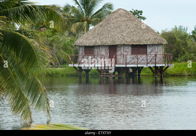 Stilt house in the lake of Lago de Tesoro, Guamá mangrove swamps, Santiago de Cuba Province, Cuba - Stock Image