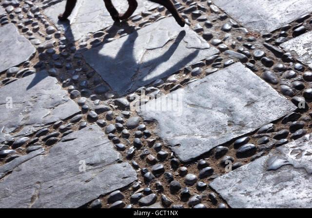 Shadow of a black cat walking  on cobblestone. - Stock Image