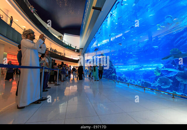 DUBAI, UAE - October 07,2014 : Aquarium in Dubai Mall - world's largest shopping mall , Downtown Burj Dubai - Stock-Bilder