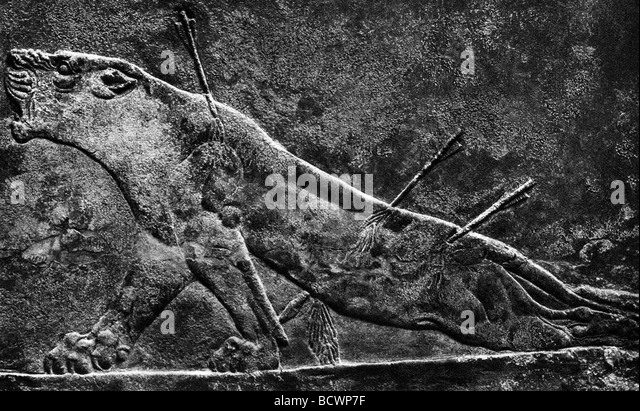 King ashurbanipal stock photos
