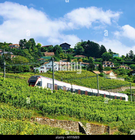 Railroad vine stock photos railroad vine stock images for Terrace jogging track