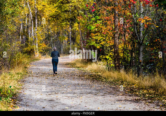 Woman jogging in the park, British Columbia, Canada - Stock Image