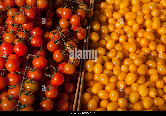 Red and yellow tomatoes at a market stall - Stock Image