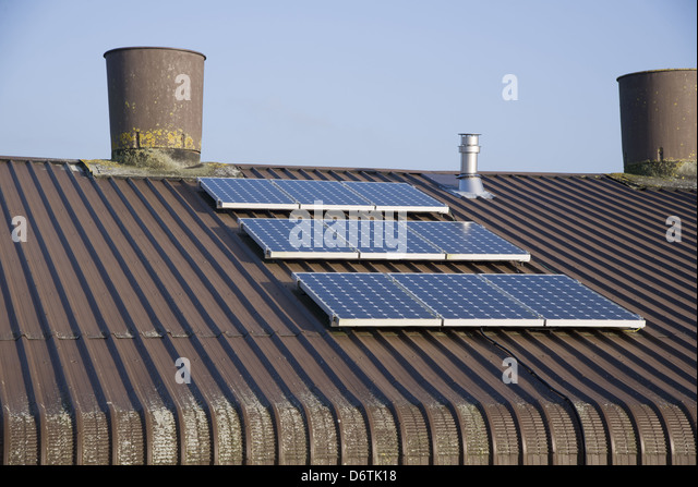Chicken farming, solar panels on roof of poultry unit, Lancashire, England, November - Stock Image