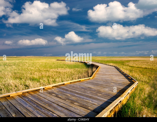 Pathway and clouds with grassland in Badlands National Park, South Dakota. - Stock-Bilder