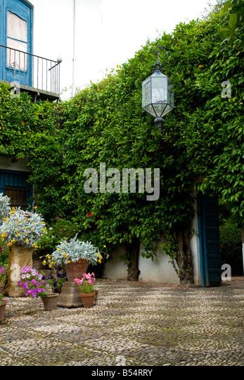Plant Pots In Mediterranean Courtyard Stock Photos & Plant Pots In Medite...