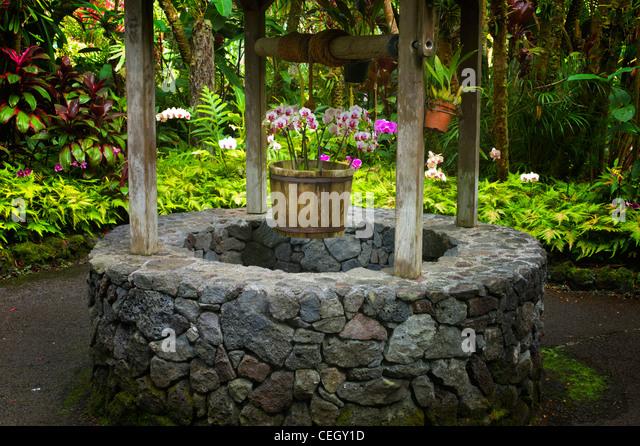 Wishing well. Hawaii Tropical Botanical Gardens. Hawaii, The Big Island. - Stock Image