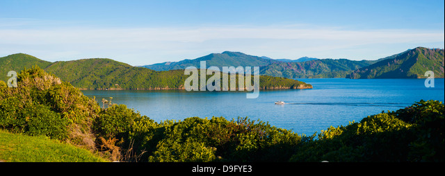 Speed boat in Queen Charlotte Sound, Picton, Marlborough Region, South Island, New Zealand - Stock-Bilder