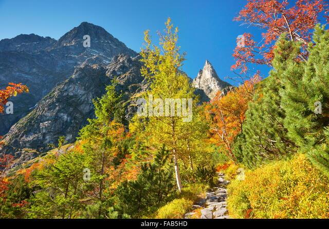 Near the Morskie Oko Lake - Tatra Mountains, Poland - Stock Image