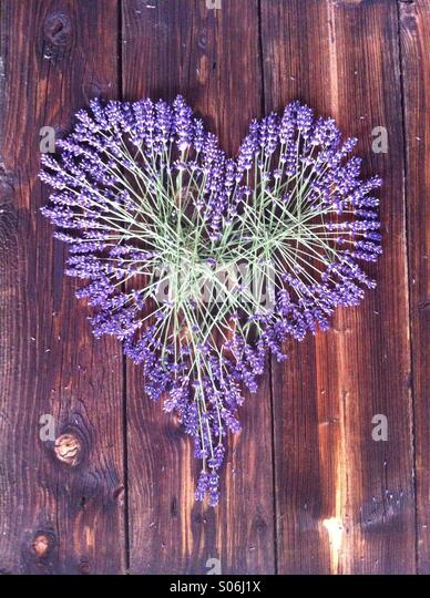 Lavender Heart On Dark Wooden Background - Stock-Bilder