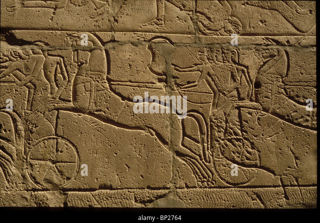 1489. EGYPTIAN WAR CARRIAGE, RAMSES II. WALL CARVING FROM ABIDOS - Stock Image