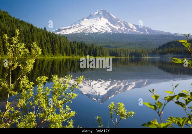 Mount hood and trillium lake - Stock Image