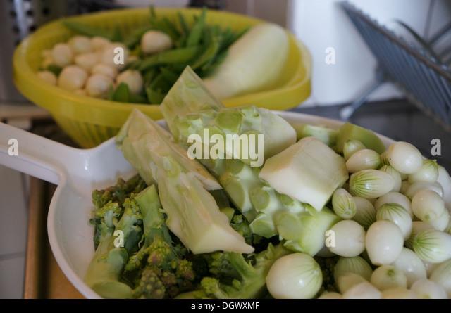 Onions, brocollo  and sugar peas prepared for fermenting - Stock Image