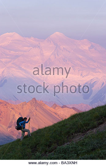 Woman backpacking on bluff overlooking Thorofare River Valley Denali National Park Interior Summer - Stock Image