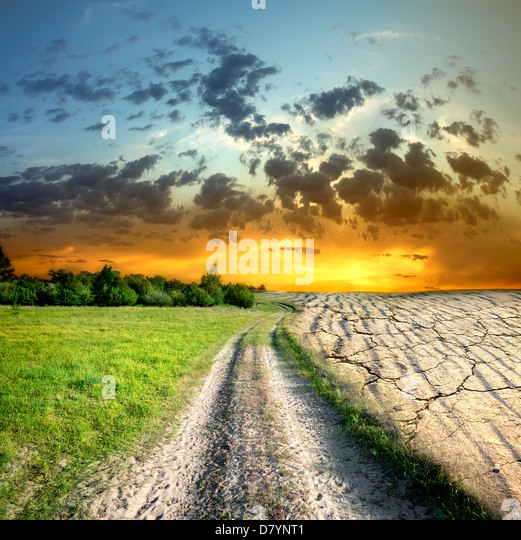 Effect of global warming on a nature - Stock Image