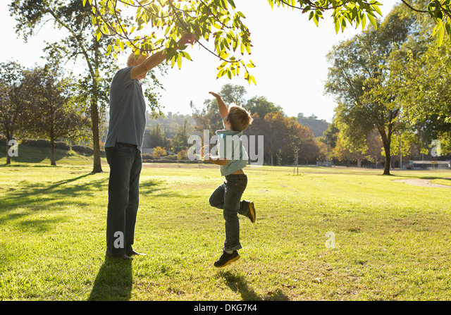 Boy jumping to reach tree branch - Stock Image