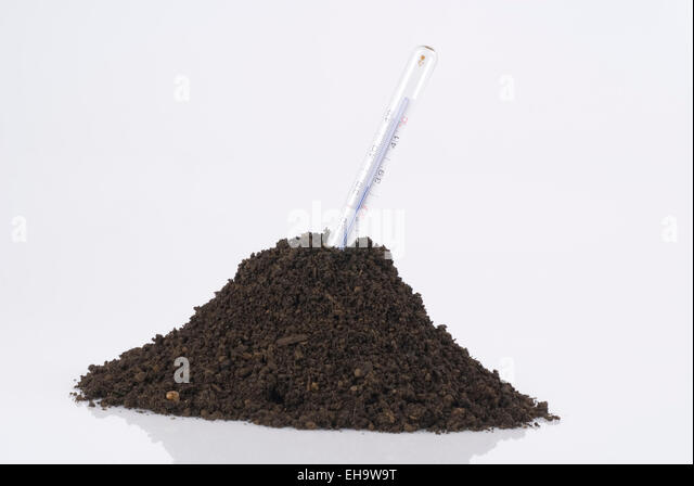 Symbol photo Climate Change Clinical Thermometer in Soil - Stock Image