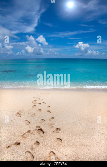 summer time on beach and footprint - Stock-Bilder