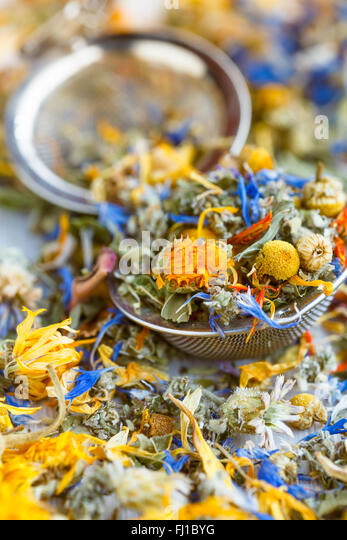 Herbs and flowers for herbal tea on a tea infuser ball - Stock Image