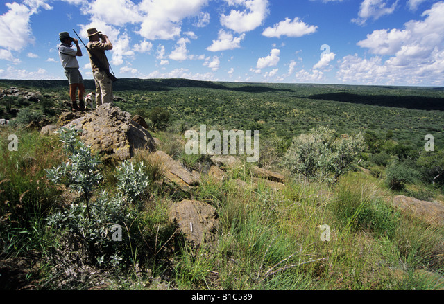 Professional hunting guide with hunter standing on hill looking through binoculars at African landscape Namibia - Stock Image