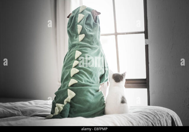 Shar pei in dinosaur costume and kitten looking through window - Stock-Bilder